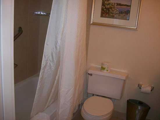 Hilton Woodcliff Lake: Shower & Toilet In Room