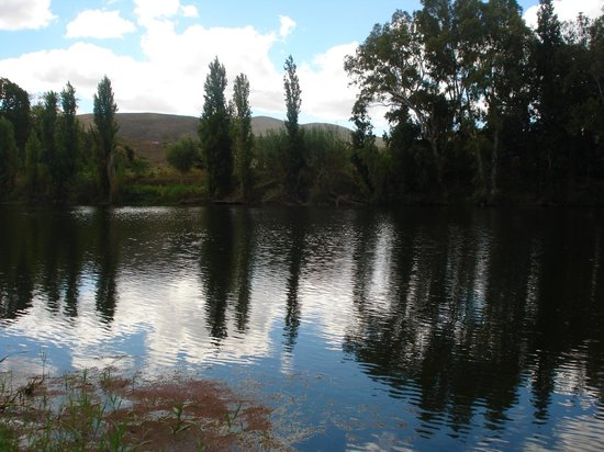 Bonnievale River Lodge: View of the River from the River bank