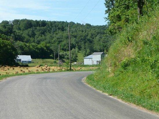 Brush Creek Inn:                                     Vista della strada in mezzo alla campagna
