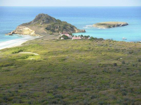 Coffin Island :                   Paradise!!