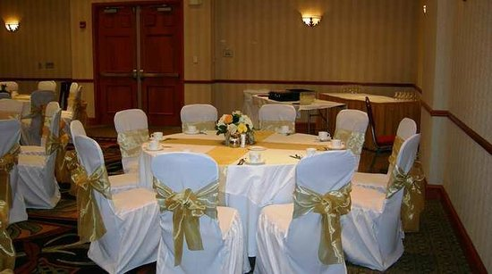 Hilton Garden Inn Dallas/Allen : Ballroom