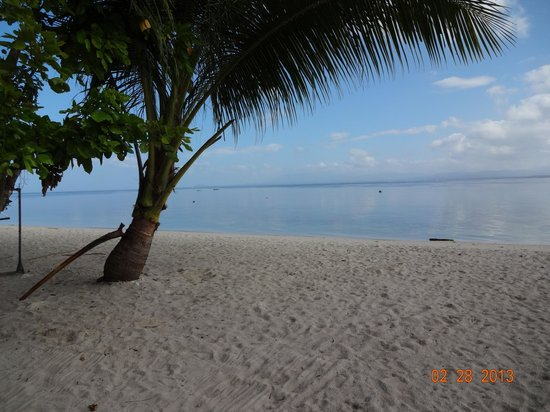 Canigao Island:                   Canigao