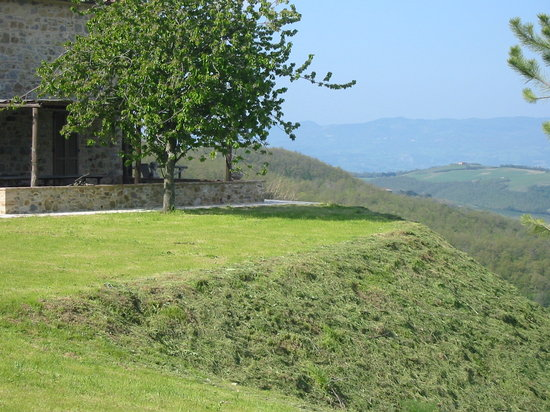 Le Colline Dei Sogni - San Casciano Dei Bagni : A garden view