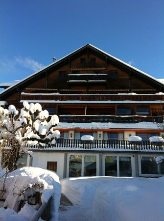 Alpe Fleurie Hotel & Residence:                   chalet principal
