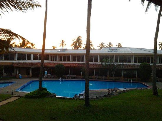 Palm Village Hotel: Garden View
