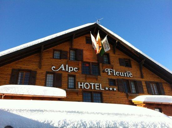 Alpe Fleurie Hotel & Residence:                   Alpe Fleurie