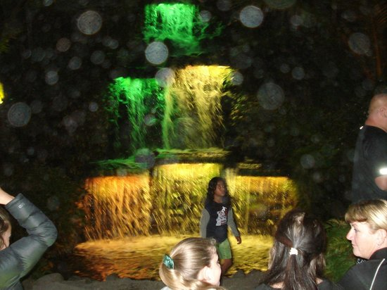 Taman Pukekura:                   Waterfall Liights at Pukekura Park, New Plymouth