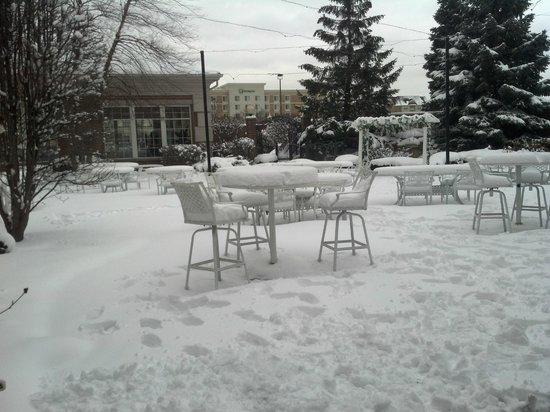 "Marriott Chicago Midway :                   9 1/2 "" of snow on the veranda"
