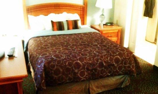 Staybridge Suites Minneapolis Maple Grove:                   Bed