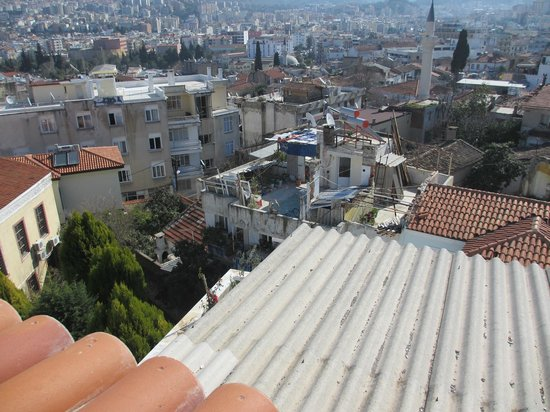 Anzac Golden Bed Pension:                   roof view