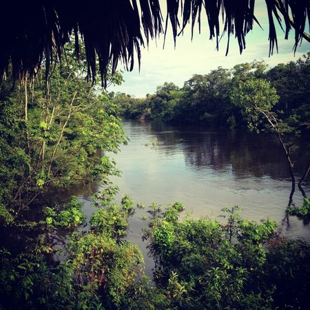 Amazonia Expeditions' Tahuayo Lodge:                   Looking onto the river from the lodge.