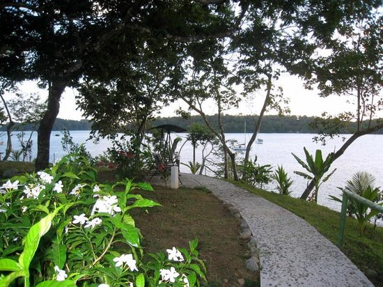 Hotel Bocas del Mar:                   hotel grounds