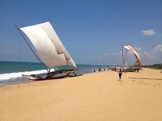 Negombo beach .... jetwing blue