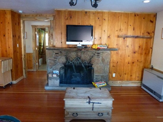 StoneBrook Resort:                   Knotty Pine & fireplace