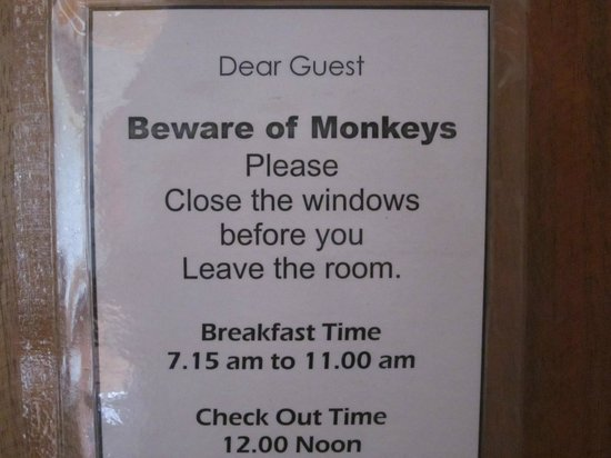 Hotel Comfort: Enough said