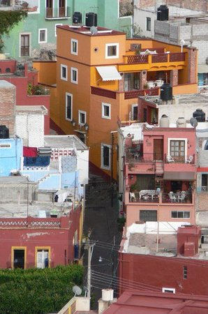 El Zopilote Mojado:                   Perros Muertos in orange, trees = Mexiamora