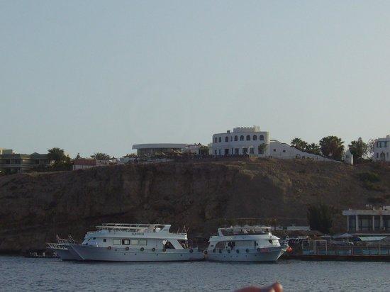 Halomy Hotel:                   Hotel from the bay