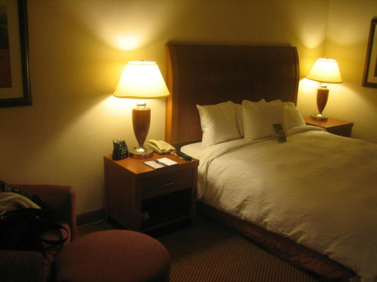 Hilton Garden Inn San Antonio Airport :                   King room