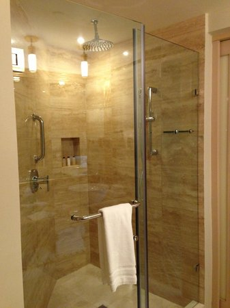 Waldorf Astoria Panama:                   Shower
