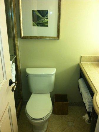 Delray Beach Marriott: Tiny bathroom