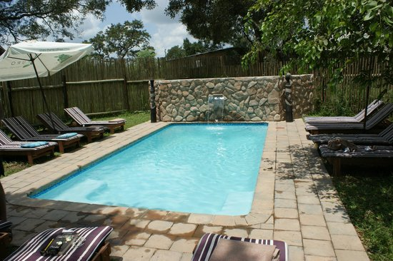 Simbavati River Lodge: Swimming pool