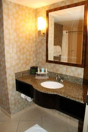 Holiday Inn Express Hotel & Suites Largo-Clearwater : bathroom