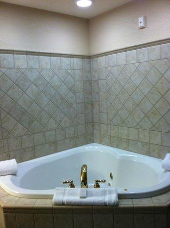 Hilton Garden Inn Wisconsin Dells:                   Whirlpool Room