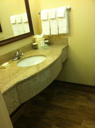Hilton Garden Inn Wisconsin Dells:                   Basic Bath