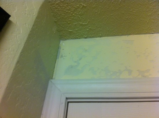 Comfort Inn & Suites Ashland:                   Bad paint job