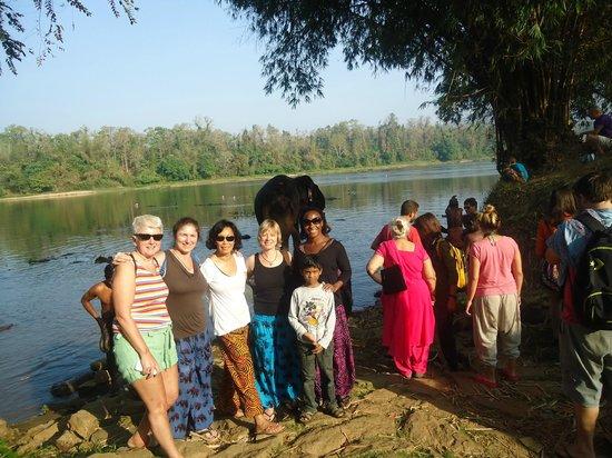 Yogalife Homestay Kerala:                   Elephant Sanctuary