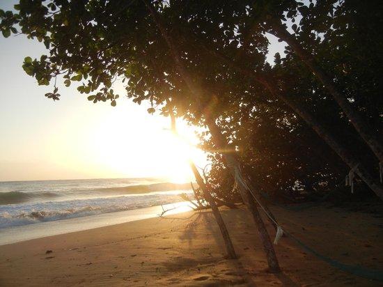 Playa Bluff Lodge:                   sunrise at the beach