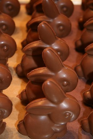 Chatham Candy Manor: We have 10-15 different kinds of chocolate bunnies! Here is our