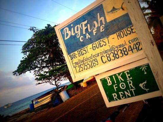 Big Fish Cafe:                   Directly facing the sea with a fresh breeze and local reef