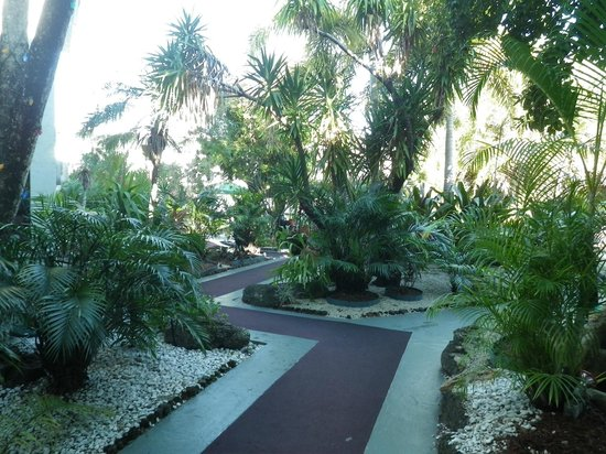 Ramada Fort Lauderdale Airport/Cruise Port:                   courtyard