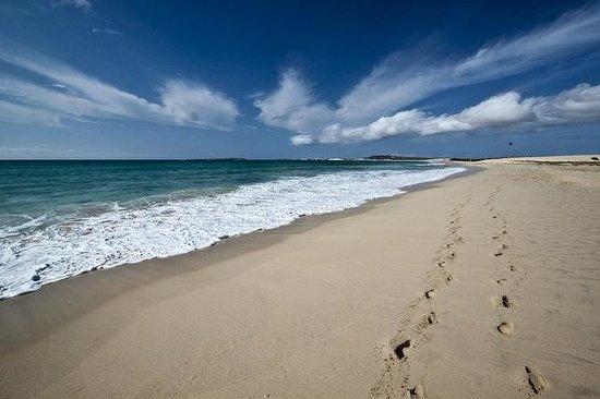 Best Beaches In Boa Vista