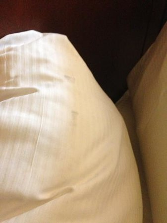 Hilton Houston Post Oak:                                     stained pillow 2 ???