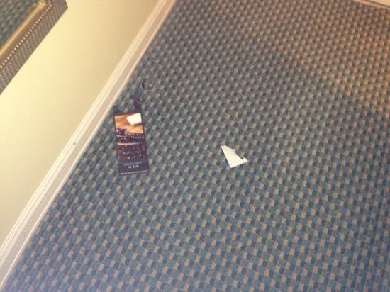 Hilton Houston Post Oak by the Galleria:                                     trash that housekeeping did not clean up