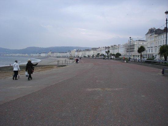 Bay Marine Hotel: v