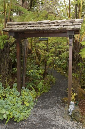 Volcano Rainforest Retreat:                                     Property entrance