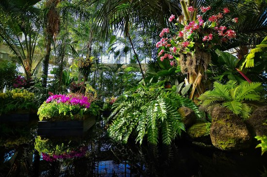 Holiday Train Show Picture Of New York Botanical Garden Bronx Tripadvisor