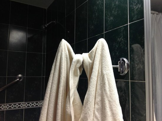 Hotel Gilfer: Missing close-up shaving mirror next to tob made an excellent rack for fluffy clean towels.