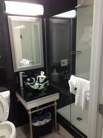 Lotus Boutique Inn & Suites:                   Bathroom Room 210