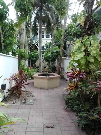 Tortuga Beach Resort:                                     Courtyard with palm trees and koi ponds
