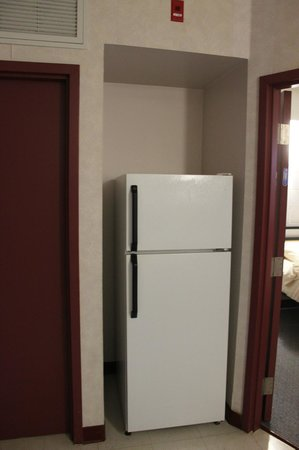 Residence & Conference Centre - Welland at Niagara College:                   Fridge