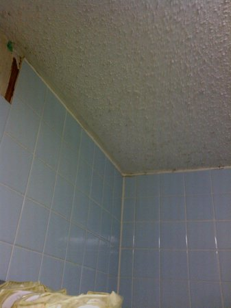 Days Inn West Memphis:                   Black Mold and a broken tile in the tub area