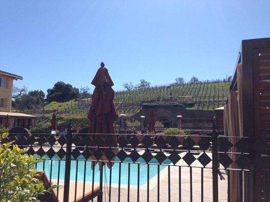 The Meritage Resort and Spa:                                     The Meritage: Pool/Trinitas Cellar Wine Cave View