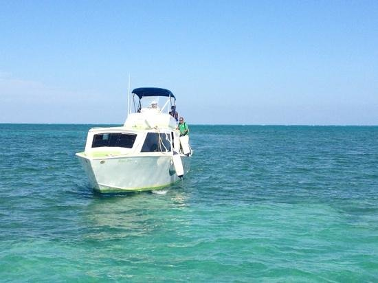 Star Tours:                   water taxi that goes between Caye Caulker and Belize City