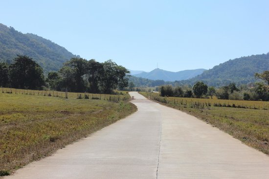 Busuanga Island Paradise:                                     Road to the airport
