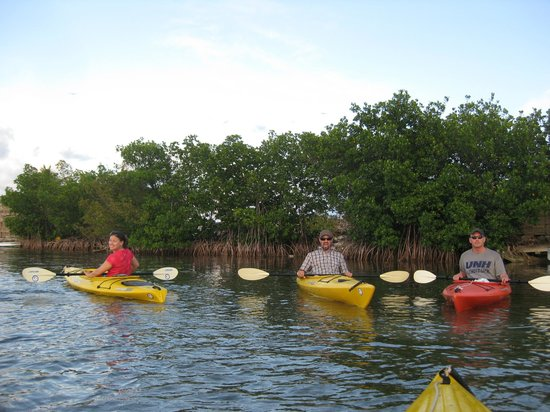 Blue Planet Kayak Eco-Tours :                                     just starting out