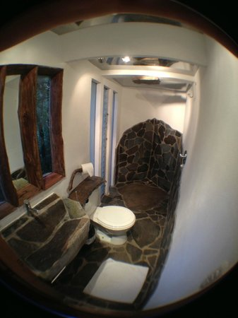 TreeTop House:                   Bathroom in the lowest suite